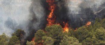 بیش از ۱۵۰ هکتار مرتع و جنگل در آتش سوخت ، دستگیری ۲ متهم آتش سوزی پارک ملی گلستان